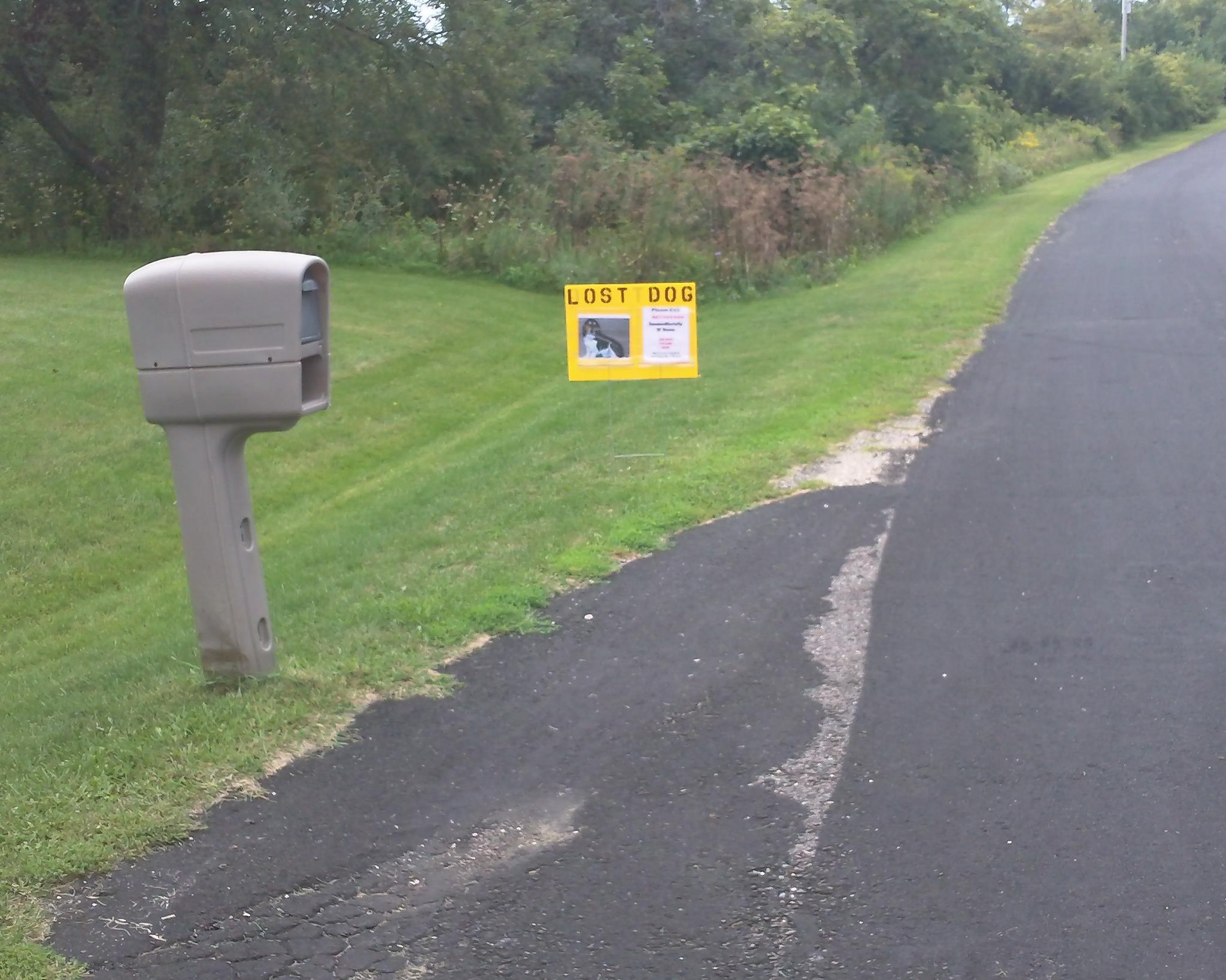 Front Yard Sign | Lost Dogs Illinois